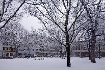 Winterstimmung auf dem Petersplatz