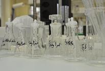 Kantonales Laboratorium
